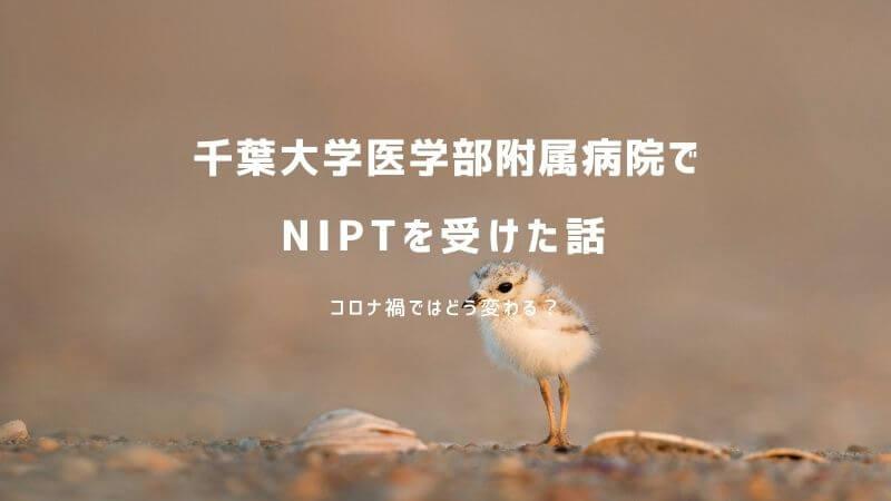 千葉大学医学部附属病院で新型出生前診断(NIPT)を受けた体験談ブログ