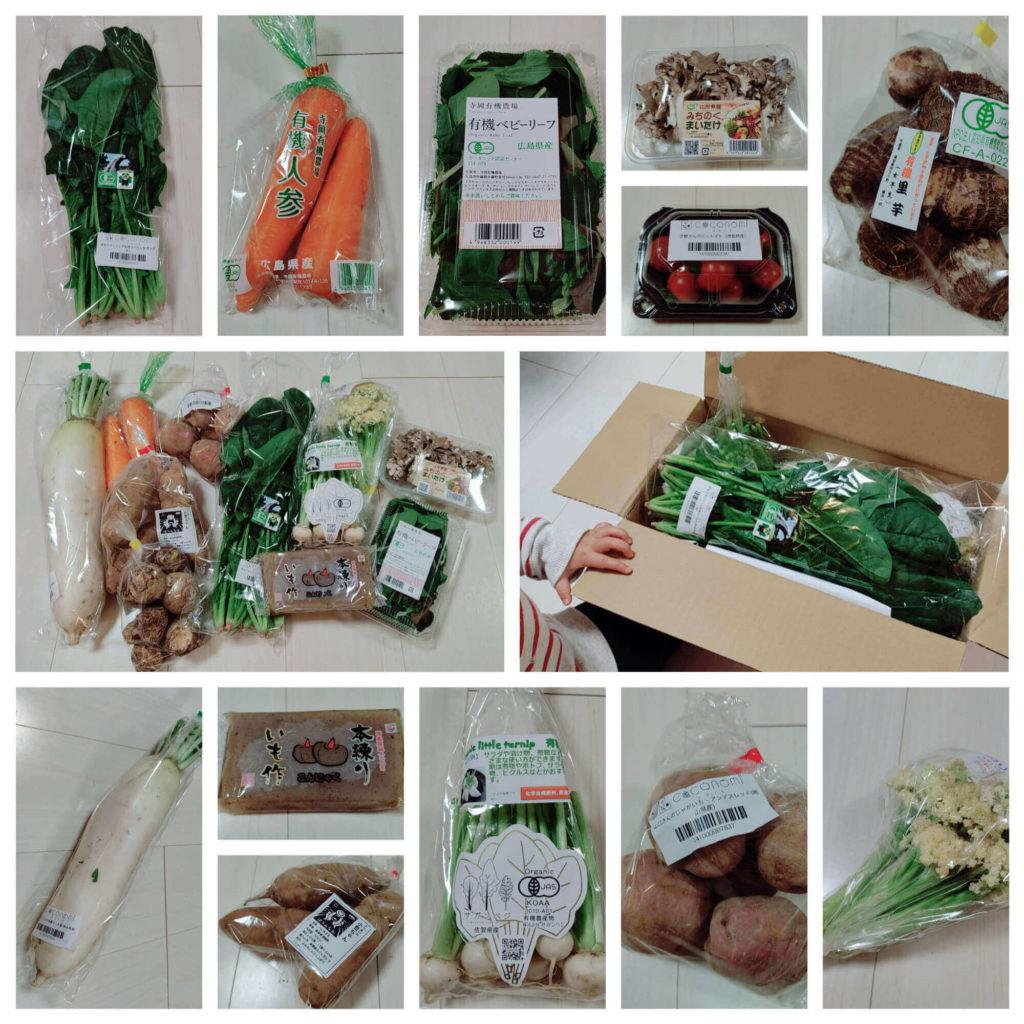 食材宅配「ココノミ」初回限定特別セットで注文した野菜の口コミ・評判・レビュー